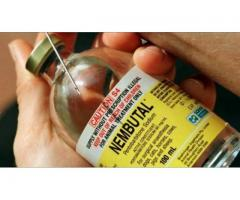 Nembutal- Pentobarbital Sodium Injection, Solution. Líquido