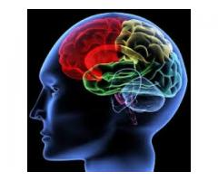Improving Brain Functioning For Healthy Aging Alpha ZXT